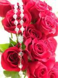 O poder de uma rosa